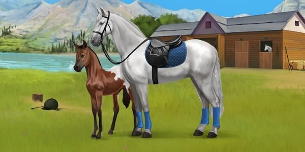 Howrse: alleva il tuo pony virtuale!