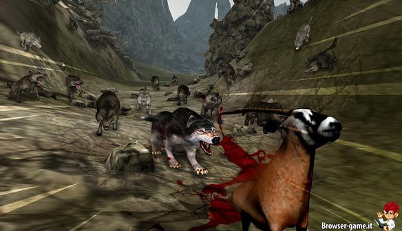 Caccia stambecco Life of Wolf 2014