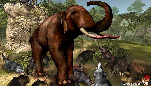 Elefante Life of Wolf 2014